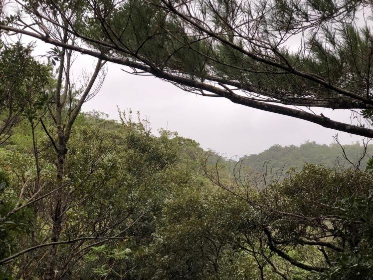 星空キャンプ〔2日目〕山の上のキャンプ場に到着。雨の切れ間に天体望遠鏡の練習だ!_d0363878_23005852.jpg