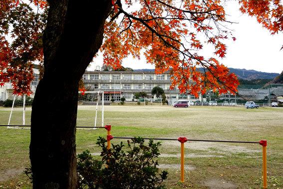 紅葉の榊原小学校_b0145296_17515891.jpg
