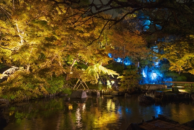 鎌倉 長谷寺の紅葉ライトアップ2019_b0145398_18470106.jpg