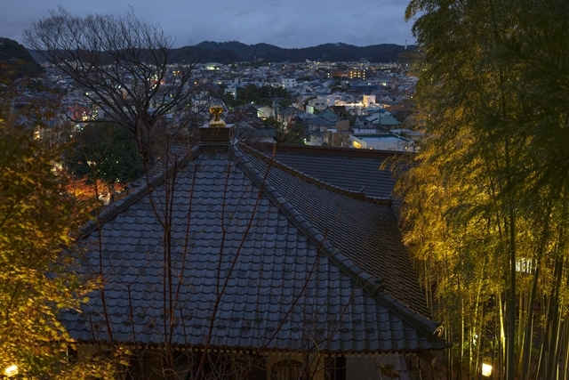 鎌倉 長谷寺の紅葉ライトアップ2019_b0145398_18481703.jpg