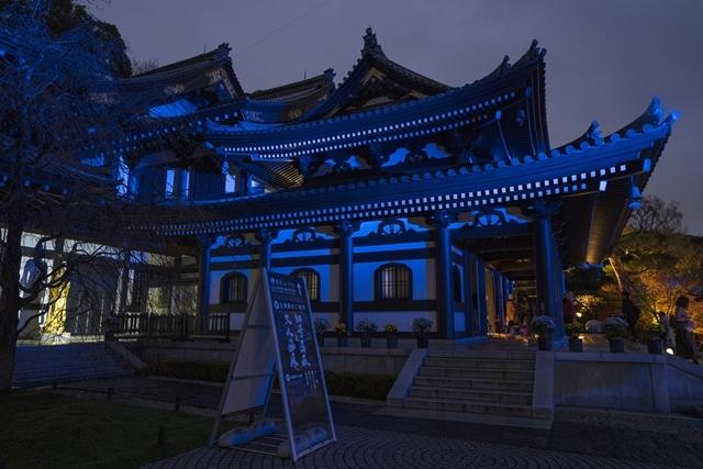 鎌倉 長谷寺の紅葉ライトアップ2019_b0145398_18483916.jpg