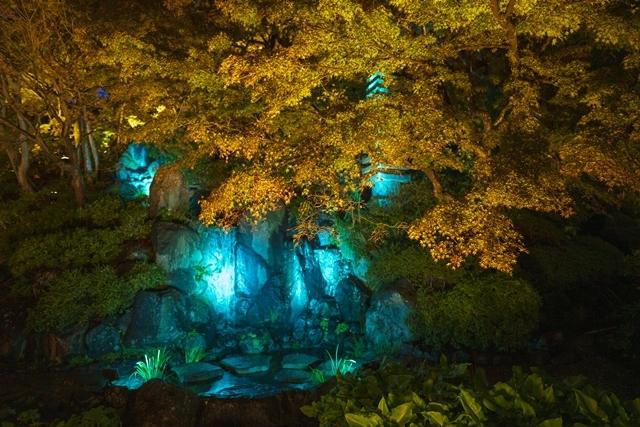 鎌倉 長谷寺の紅葉ライトアップ2019_b0145398_18493741.jpg