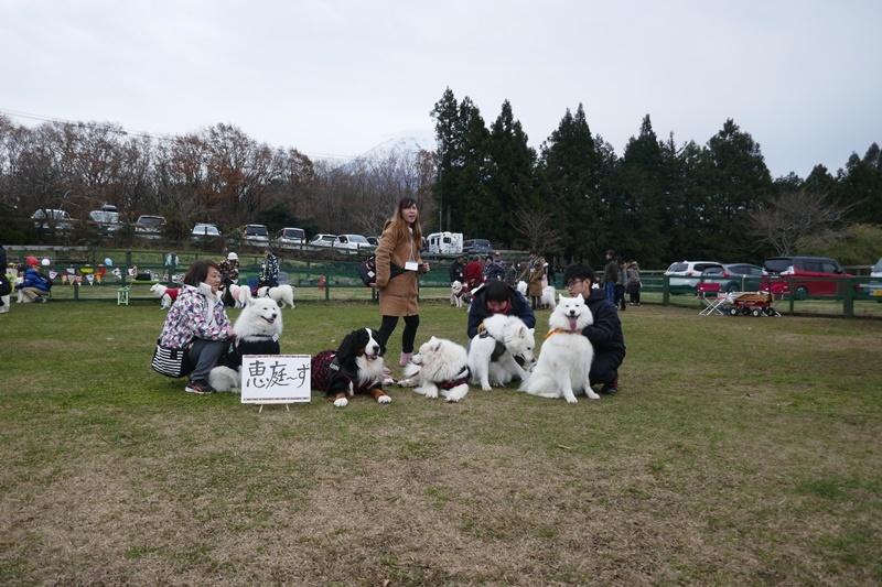 富士さも2019   12月7日 [土]_e0018604_19224047.jpg