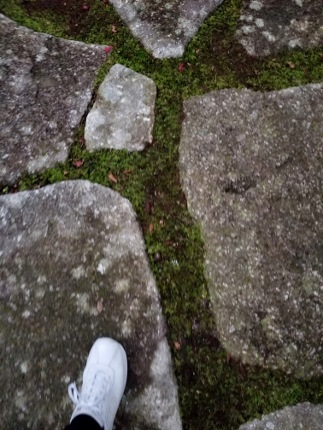 AMAN KYOTO アマン京都_b0122805_1856637.jpg