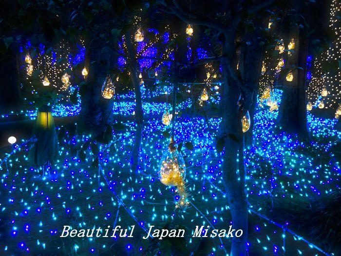 湘南の宝石 シーキャンドル 2019・゚☆、・:`☆・・゚・゚☆。_c0067206_15402011.jpg