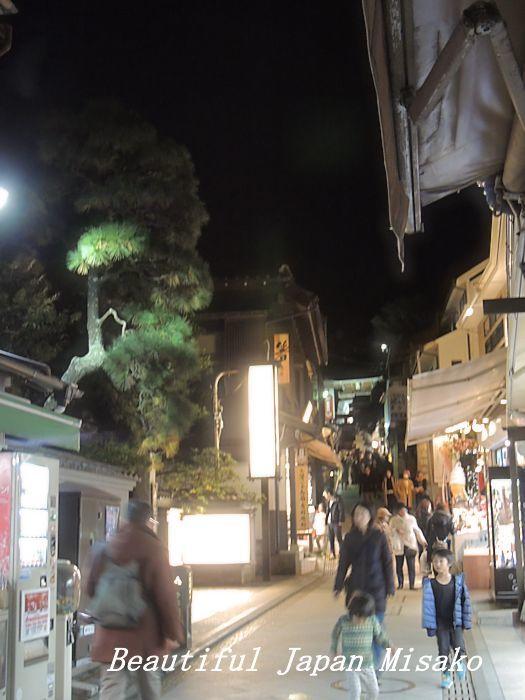 江ノ電を降りて江の島へ・゚☆、・:`☆・・゚・゚☆。12月5日_c0067206_17291612.jpg