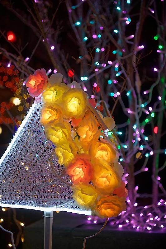 2019クリスマスイルミネーション@八瀬クリスマスイルミステーション_f0032011_17080076.jpg