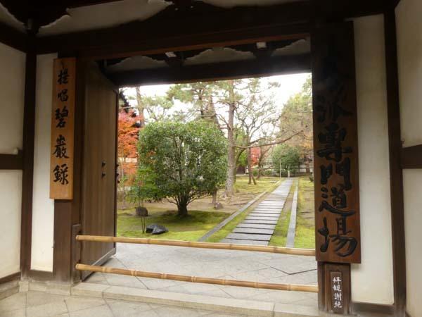 龍翔寺とくすのき落葉_e0048413_16185544.jpg