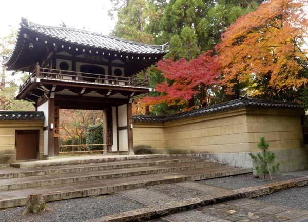 龍翔寺とくすのき落葉_e0048413_16185889.jpg
