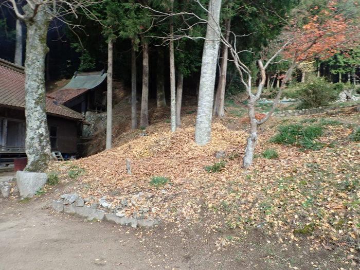 客人神社の落ち葉の掃除_c0116915_23414843.jpg