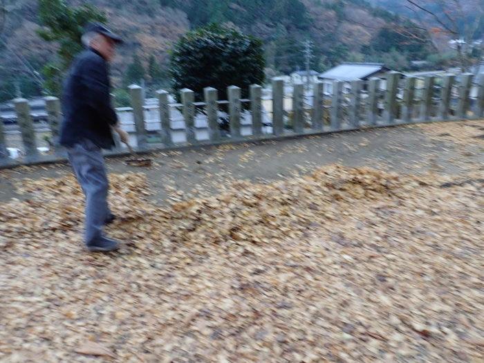 客人神社の落ち葉の掃除_c0116915_23441478.jpg