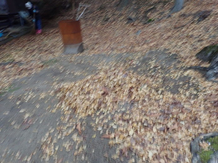 客人神社の落ち葉の掃除_c0116915_23442361.jpg