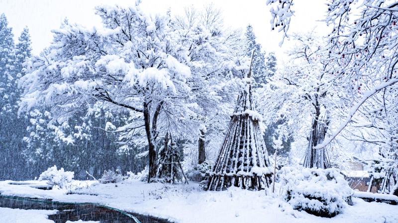冬の風物詩_d0370716_09230802.jpg