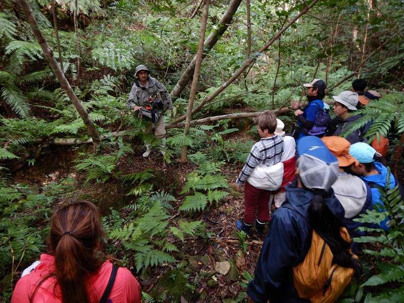 2019年度 第6回 くんじゃん山学校 秋の森で見つけよう!_f0121321_17404711.jpg