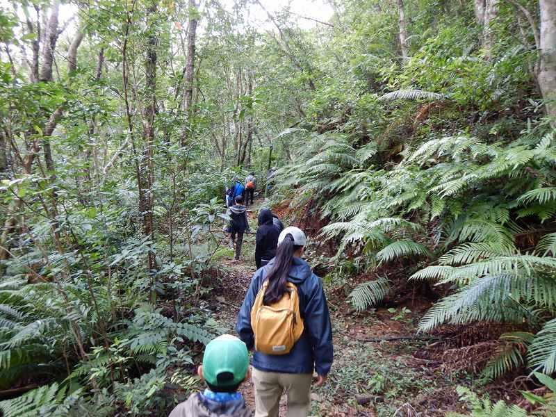 2019年度 第6回 くんじゃん山学校 秋の森で見つけよう!_f0121321_17471058.jpg
