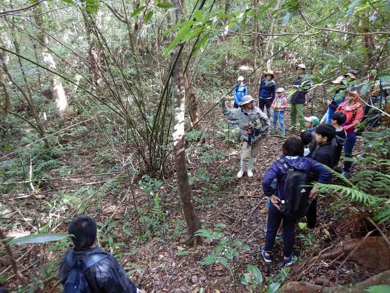 2019年度 第6回 くんじゃん山学校 秋の森で見つけよう!_f0121321_17480272.jpg