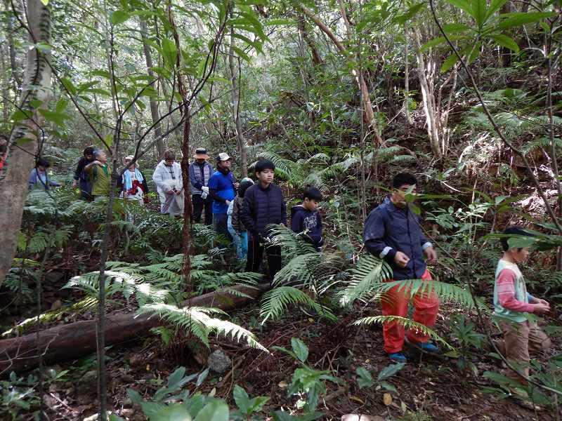 2019年度 第6回 くんじゃん山学校 秋の森で見つけよう!_f0121321_17492090.jpg