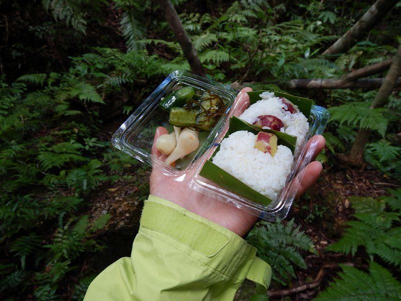 2019年度 第6回 くんじゃん山学校 秋の森で見つけよう!_f0121321_18195220.jpg