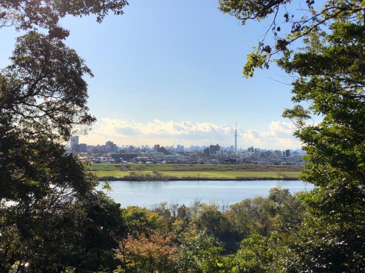 美里公園散策_c0190424_19010501.jpg