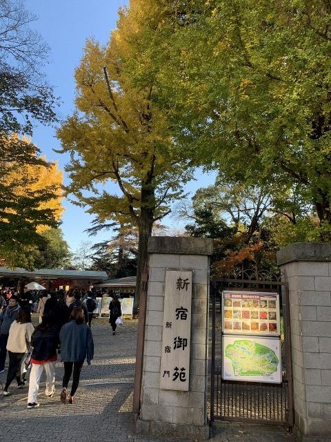 新宿御苑_e0037126_21253681.jpg