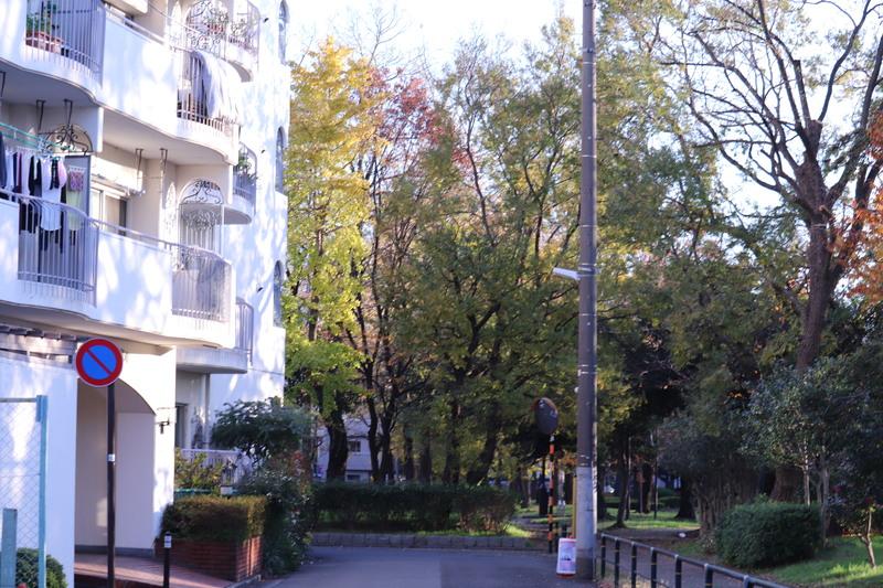 足立区の街散歩  431_a0214329_2142181.jpg