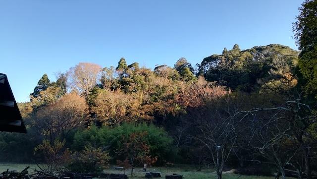 今日は寒い朝でした_a0123836_13365182.jpg