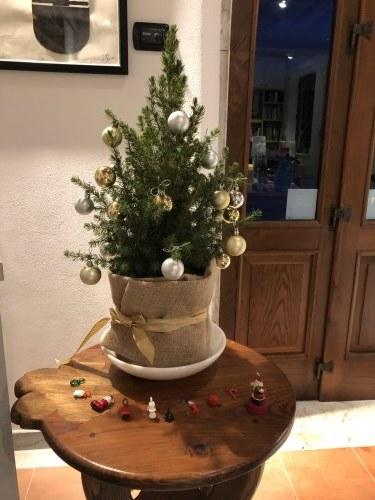 クリスマス室礼_d0136540_02171675.jpg