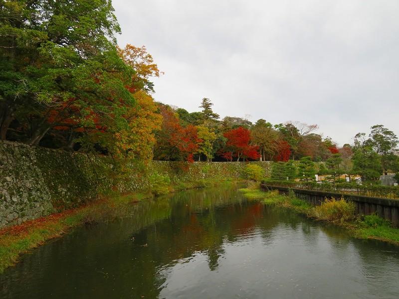 彦根城の紅葉20191203_e0237645_23121397.jpg