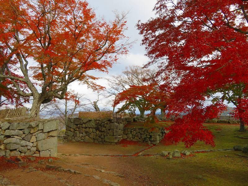 彦根城の紅葉20191203_e0237645_23131303.jpg