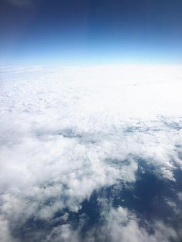 沖縄へGo!@2019年 冬_e0292546_07533580.jpg