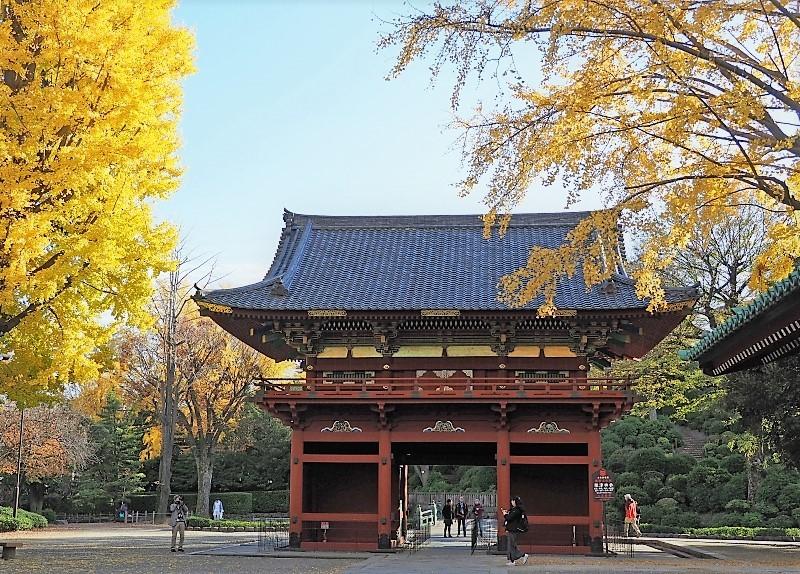 根津神社へ ☆_d0146247_14444869.jpg