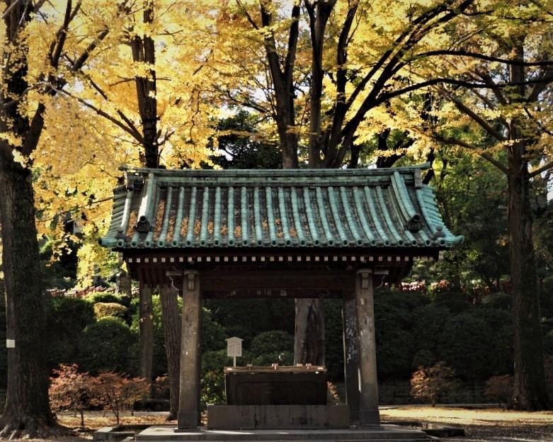 根津神社へ ☆_d0146247_14454241.jpg