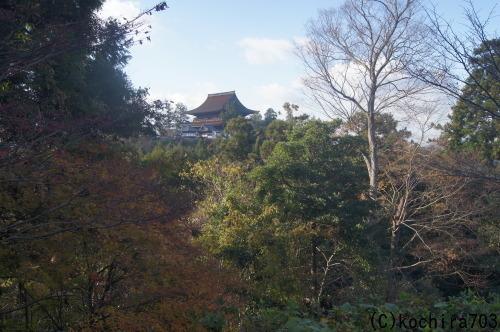 今年最後の紅葉~吉野山_e0181373_21432481.jpg