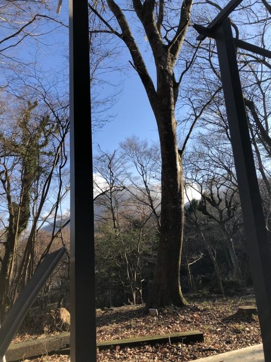 2019年12月8日 箱根湯河原箱根_b0098584_15263217.jpeg