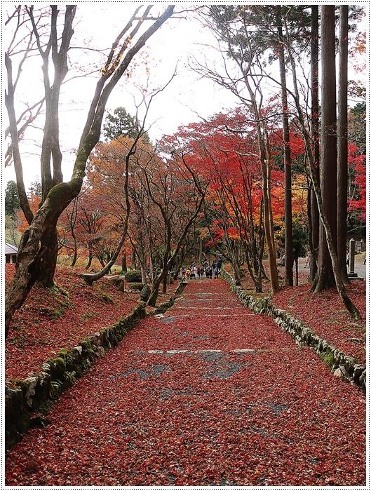 名古屋発、おひとり参加のツアー 備忘録 その2 多良峡から鶏足寺、その前に昼食もね_b0175688_23480656.jpg