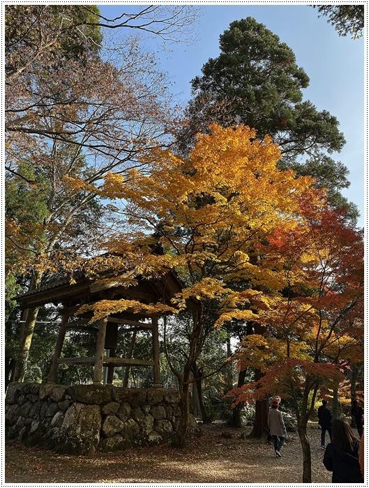名古屋発、おひとり参加のツアー 備忘録 その2 多良峡から鶏足寺、その前に昼食もね_b0175688_23593139.jpg