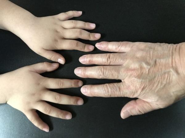 パセリ一家の手比べと甥っ子が山口から_e0397389_15251582.jpeg