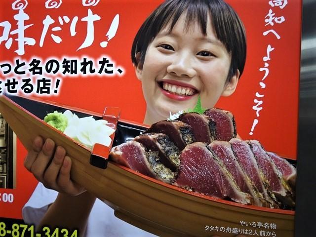 高知と言えば坂本龍馬、高知と言えばカツオのたたき・・・美味しいものが一肺の高知、歴史に裏付けされる高知の魅力_d0181492_23502571.jpg