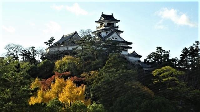 明治維新になぜ坂本龍馬が高知から中央へ、日本を動かす力はなぜ生まれたのか、高知が生んだ輩出した明治維新に活躍した若者たち_d0181492_23535936.jpg