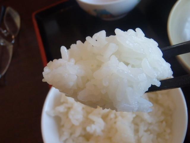 讃岐製麺      箕面半町店_c0118393_11251215.jpg