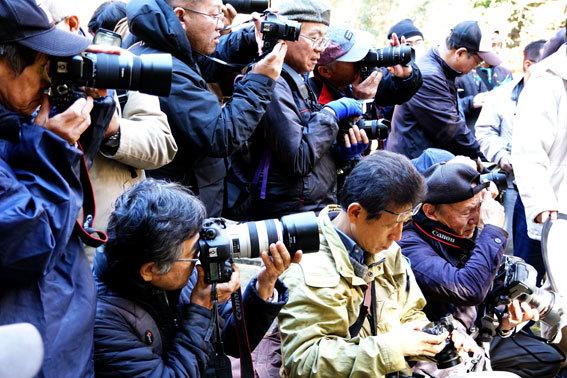 昨日は榊原温泉で撮影会でした_b0145296_20094791.jpg