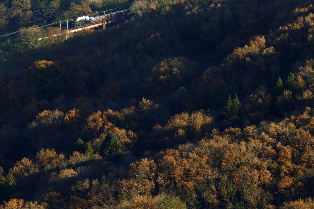 12月の午後3時の斜光線に光る汽車と蒸気 - 2019年晩秋・秩父鉄道 -_b0190710_18341410.jpg