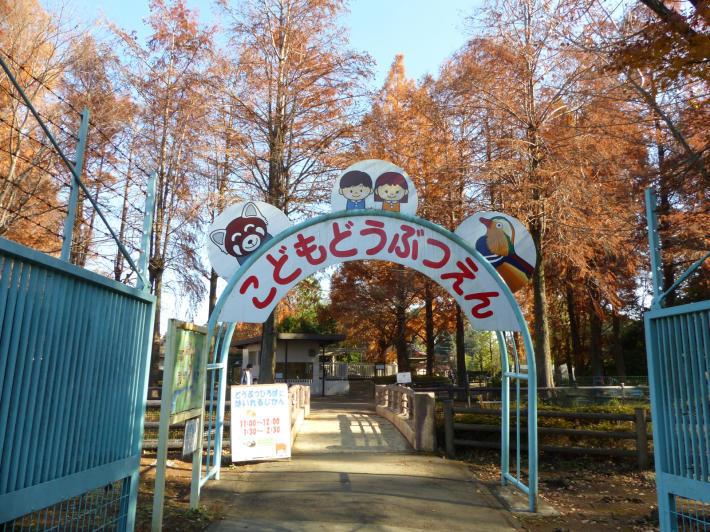 さいたま国際マラソンからの大崎公園_f0296312_17360986.jpg