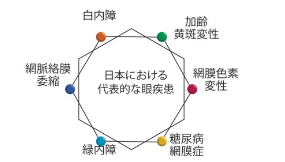 ( ´ⅴ`)「眼の健康を守るルティーナレンズ」 ■京都ファミリー店■_f0349114_17243230.png