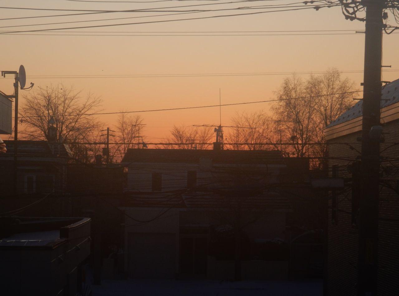 寒さから脱出中_c0025115_22251385.jpg