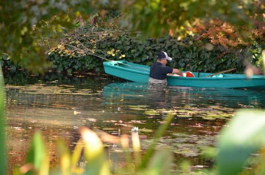 【休園中】水の庭の作業風景_e0135518_16371081.jpg