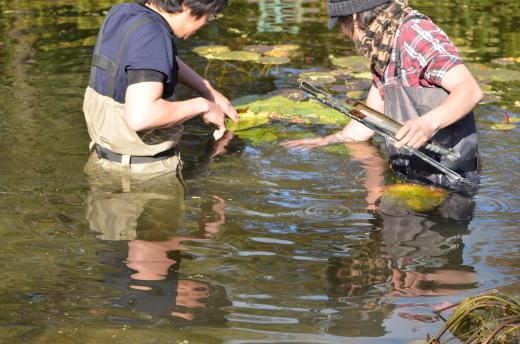 【休園中】水の庭の作業風景_e0135518_16380217.jpg