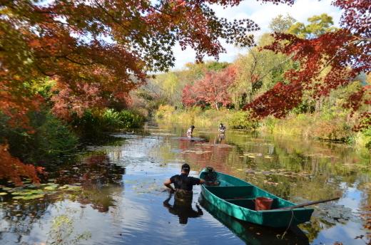 【休園中】水の庭の作業風景_e0135518_16444077.jpg
