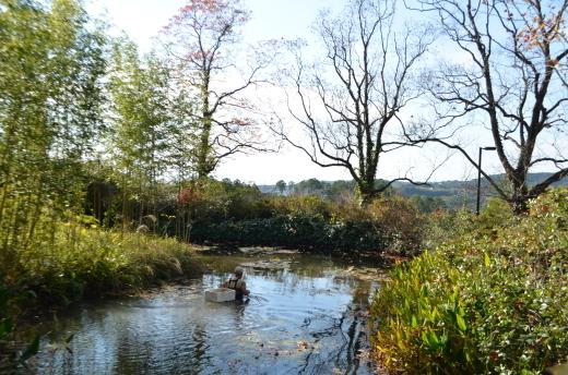 【休園中】水の庭の作業風景_e0135518_16500279.jpg