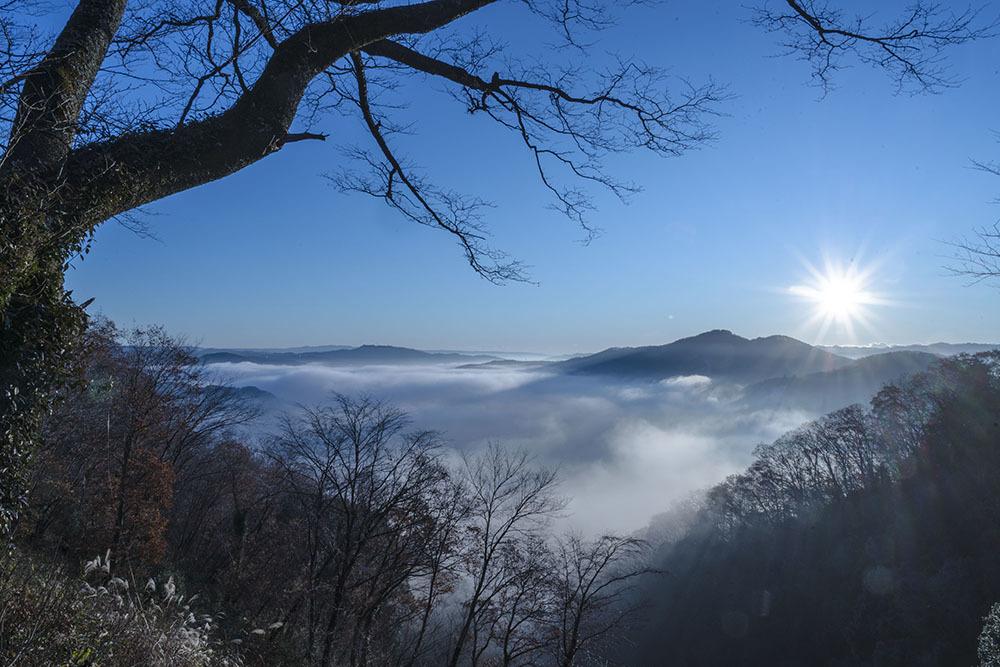 鎌倉山からの雲海_f0324026_19014323.jpg